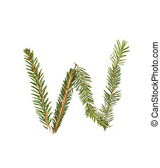 Spruce twigs forming the letter 'W'