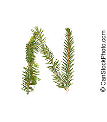 Spruce twigs forming the letter 'N'