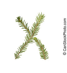 Spruce twigs forming the letter 'X'