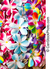 many beautiful Flower garlands in thai style - Flower...