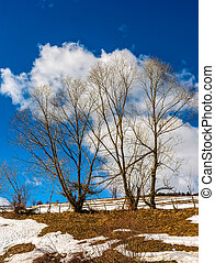 last days of winter in rural landscape - spring has come....