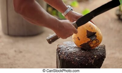 Man with machete hacking coconut outdoors
