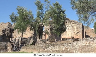 Thermal bath in archeological site in Hadrian's Villa, Rome...