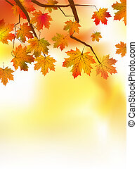 Autumnal leaf of maple and sunlight EPS 8 vector file...