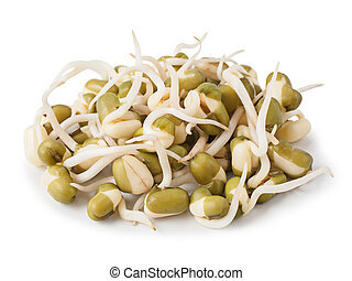 Sprouted lentil seeds isolated on white background.