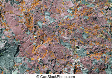 Closeup of Red Rock Covered in Orange Lichen