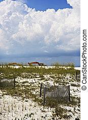 Heavy Machinery, Gulf Coast Beach - Heavy earth-moving...