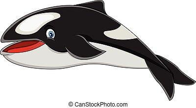Killer Whale cartoon - full color