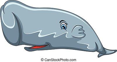 Sperm Whale cartoon - full color