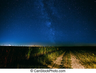 Night Starry Sky Above Country Road In Countryside And Green...