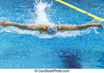 male athlete swimmer swims butterfly stroke in pool