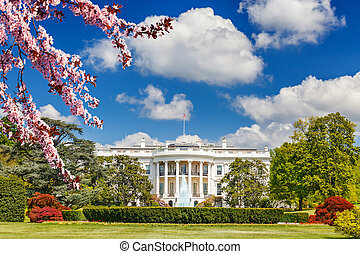 The White House at spring