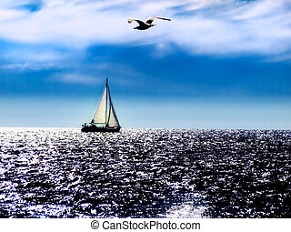 Adriatic noon - Sailboat and gull on the high seas , natural...