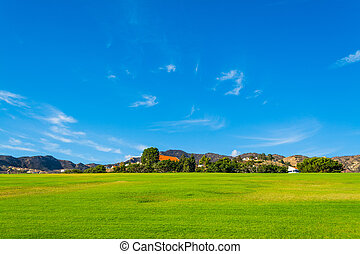 green field and blue sky in California, USA