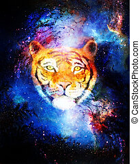 head of a young tiger on abstract space background with...