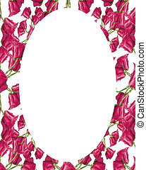 Circle Frame Background with Decorated Floral Borders -...