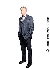 Businessman in Gray Suit Isolated on White Background. Senior Man