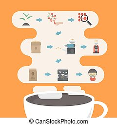 coffee process infographic - step by step, from beans to...