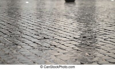 Person walking on pavement in the rain at day