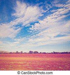 Plowed Fields of Spain in a Autumn, Instagram Effect