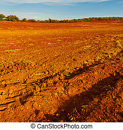 Plowed Fields of Spain in a Autumn