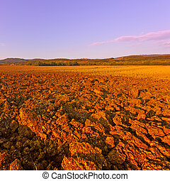 Plowed Fields of Italy in a Autumn at Sunset, Instagram...