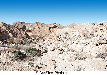 Negev Desert - Rocky Hills of the Negev Desert in Israel