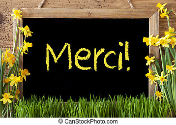 Spring Flower Narcissus, Chalkboard, Merci Means Thank You -...
