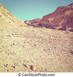 Negev Desert - Rocky Hills of the Negev Desert in Israel,...