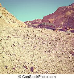 Negev Desert - Rocky Hills of the Negev Desert in Israel,...