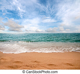 beach of the Mediterranean Sea - perfect sunny blue sky and...