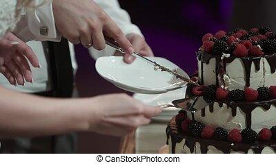Man and woman cutting celebration cake indoors closeup