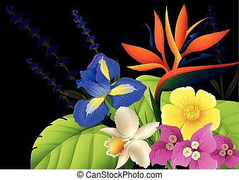 Different types of flowers on black background illustration