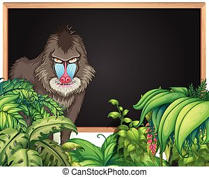 Frame template with baboon in forest background