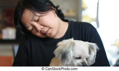 Dog so cute on chair with woman doziness to sleep - Dog so...