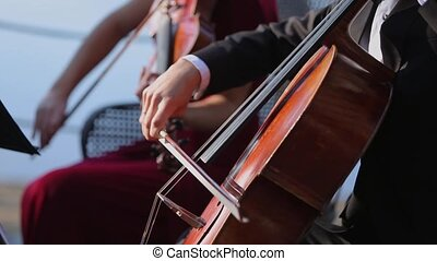 Man playing cello outdoors at sunny day