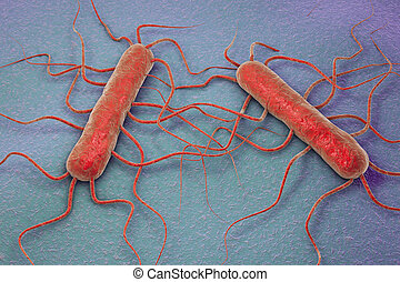 Bacterium Listeria monocytogenes - 3D illustration of...
