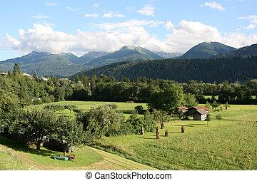 Tirol - Countryside in Tirol, Austria Haystacks, small...
