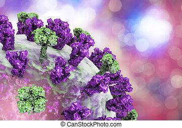 Influenza virus illustration