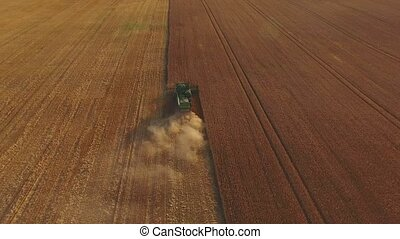 Wheat field and combine. Machine gathering crops, aerial...
