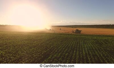 Field, machines and sky. Agricultural landscape and...