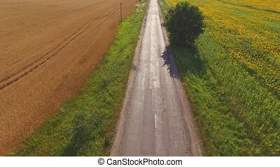 Field and asphalt road. Truck in motion. Agribusiness and...