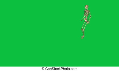 skeleton jump horizontal - separate on green screen - 3d...