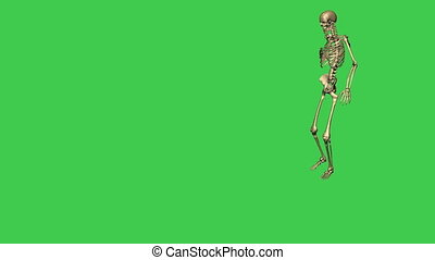 skeleton walking hurt - separate on green screen - 3d...
