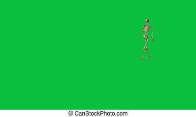 skeleton walking - separate on green screen