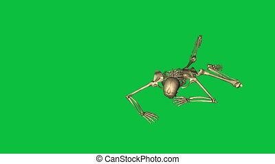 skeleton crawl and throw grenade - separate on green screen...