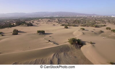 Aerial landscape with sand and plants - Aerial shot of with...