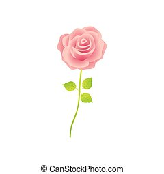 pink rose with stem and leaves floral design