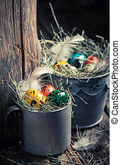 Closeup of colourfull eggs for Easter with hay