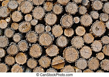 Log wood pile - Pile of logs cut for firewood